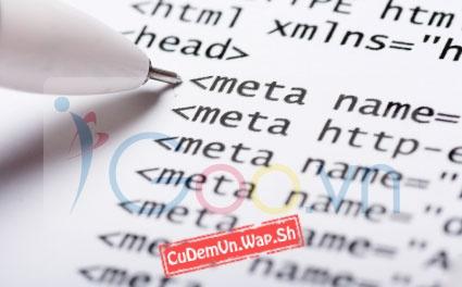 Các thẻ <meta> rất quan trọng và cần thiết trong SEO mà một trang Web phải có