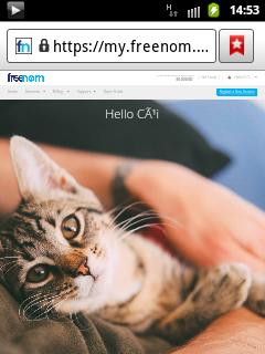 Hướng dẫn đăng kí tên miền Freenom (.cf .gq) kèm park domain Free cho Xtgem (có ảnh Full HD không che)