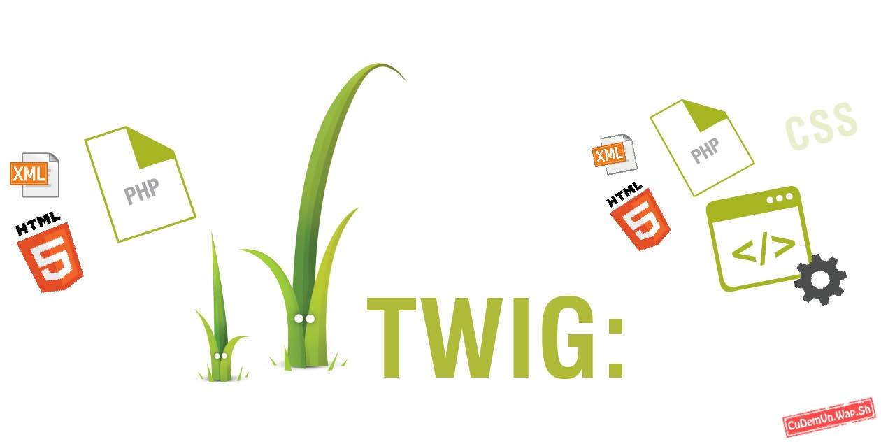 Mở đầu Serie học TWIG căn bản Bài 1: Biến, in ra và chú thích