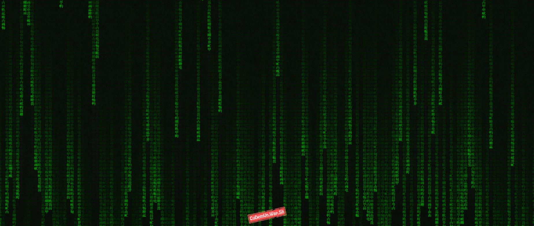 Share code Index hacker dạng Ma trận (matrix) rất đẹp bằng HTML5